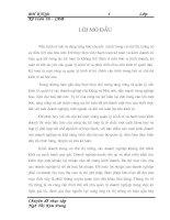 206 Kế toán bán hàng và xác định kết quả bán hàng tại Công ty TNHH Đầu tư Thương mại Việt Hoàn