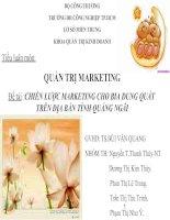 Chiến lược Marketing cho bia Dung Quất trên địa bàn tỉnh Quảng Ngãi