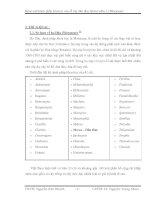 Tổng quan khảo sát thành phần hóa học rễ cây dâu tằm