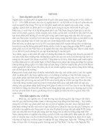 TỰ DO HÓA THƯƠNG MẠI DỊCH VỤ PHÂN PHỐI  THEO CÁC YÊU CẦU CỦA WTO VÀ CÁC CAM KẾT CỦA VIỆT NAM