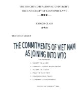 the bilateral and multilateral commitment that Viet Nam made to participate in WTO.