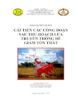 cải tiến các công đoạn sau thu hoạch lúa truyền thống để giảm tổn thất
