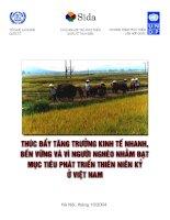 Thúc đẩy tăng trưởng kinh tế nhanh bền vững và vì người nghèo nhằm đạt mục tiêu phát triển thiên niên kỷ ở Việt Nam
