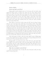 MỘT SỐ GIẢI PHÁP NHẰM PHỤC HỒI VÀ PHÁT TRIỂN CÁC LÀNG NGHỀ Ở TỈNH THÁI BÌNH
