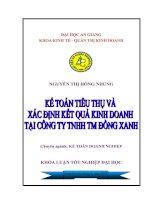 Kế toán tiêu thụ và xác định kết quả kinh doanh tại Công ty  TNHH TM Đồng Xanh