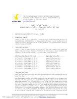 Bản thuyết minh báo cáo tài chính tổng hợp giữa Niên Bộ