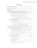 MỘT SỐ MÔ HÌNH VÀ GIẢI PHÁP MẠNG NGN TẠI VIỆT NAM