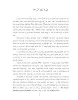 392 Phân tích thực trạng hoạt động marketing của Công ty cổ phần XNK lâm sản Hoàng Anh