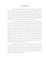 565 Hoàn thiện chiến lược marketing xuất khẩu mặt hàng giầy vải của Công ty giầy Thăng Long