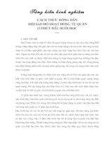 CÁCH THỨC HƯỚNG DẪN ĐỘI SAO ĐỎ HOẠT ĐỘNG TỰ QUẢN 15 PHÚT ĐẦU BUỔI HỌC