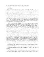 Phân định thẩm quyền trong tố tụng hình sự Việt Nam