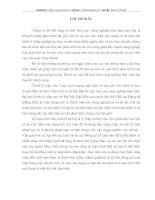 HÌNH THÁI KINH TẾ –XÃ HỘI Ở VIỆT NAM TRONG CÔNG CUỘC CÔNG NGHIỆP HOÁ- HIỆN ĐẠI HOÁ