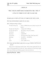 89 Thực trạng và giải pháp triển khai Marketing mục tiêu ở Công ty TNHH Nhà nước 1 thành viên Dệt 19-5 Hà Nội - chương 2,3