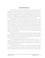 GIẢI PHÁP NÂNG CAO HIỆU QUẢ ĐẦU TƯ PHÁT TRIỂN CẢNG BIỂN VIỆT NAM