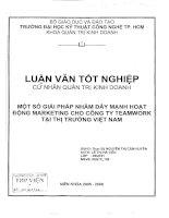 409 Một số giải pháp nhằm đẩy mạnh hoạt động marketing cho công ty Teamwork tại thị trường Việt Nam