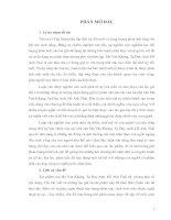 Vấn đề cảm hứng phê phán được thể hiện qua các tác phẩm Văn xuôi Việt Nam hiện đại