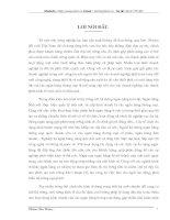 GIẢI PHÁP NÂNG CAO CHÂT LƯỢNG TÍN DỤNG TẠI SỞ GIAO DỊCH NGÂN HÀNG CHÍNH SÁCH XÃ HỘI NAM ĐỊNH