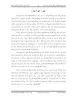 CÁC GIẢI PHÁP NHẰM NÂNG CAO CHẤT LƯỢNG DỊCH VỤ KHAI THÁC CẢNG TẠI CẢNG LONG BÌNH