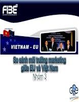 So sánh môi trường marketing giữa EU và Việt Nam