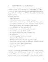 II.HỆ THỐNG BÁO CÁO TÀI CHÍNH CÔNG TY CỔ PHẦN ĐẦU TƯ THƯƠNG MẠI THUỶ SẢN