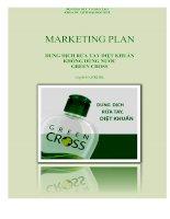 Chiến lược Marketing cho sản phẩm Green Cross