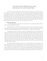 CẢI CÁCH HÀNH CHÍNH Ở VIỆT NAM: THÀNH TỰU VÀ CÁC THÁCH THỨC