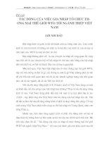 TÁC ĐỘNG CỦA VIỆC GIA NHẬP TỔ CHỨC THƯƠNG MẠI THẾ GIỚI WTO TỚI NGÀNH THÉP VIỆT THÉP VIỆT NAM