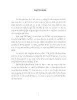 QUÁ TRÌNH HÌNH THÀNH, PHÁT TRIỂN VÀ CƠ CẤU TỔ CHỨC CỦA NHTMCP PHÁT TRIỂN NHÀ TP HCM VÀ CHI NHÁNH HÀ NỘI