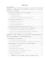 MỘT SỐ GIẢI PHÁP PHÒNG NGỪA VÀ  HẠN CHẾ RỦI RO CHO VAY TẠI TECHCOMBANK –  CHI NHÁNH HÀ NỘI