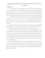 BIẾN ĐỔI KHÍ HẬU Ở VIỆT NAM HIỆN TRẠNG VÀ GIẢI PHÁP
