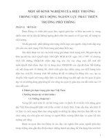 MỘT SỐ KINH NGHIỆM CỦA HIỆU TRƯỞNG TRONG VIỆC HUY ĐỘNG NGUỒN LỰC PHÁT TRIỂN TRƯỜNG PHỔ THÔNG