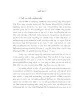 Mối quan hệ giữa pháp luật và luật tục ÊĐê
