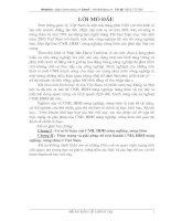 Thực trạng và giải pháp để tiến hành CNH, HĐH nông nghiệp nông thôn ở Việt Nam