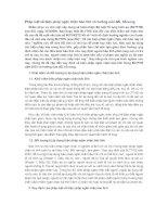 Pháp luật về biện pháp ngăn chặn bảo lĩnh và hướng sửa đổi, bổ sung