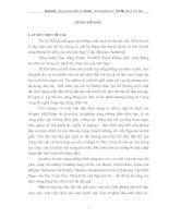 Nghệ thuật xây dựng nhân vật Acxinhia trong tiểu thuyết Sông đông êm đềm của Mikhain Sôlôkhốp