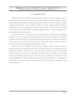 SELECTION PLAN FOR MARKETING TEAM OF RISINGSTAR S213