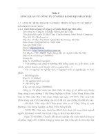 THỰC TRẠNG TỔ CHỨC KẾ TOÁN TẠI CÔNG TY CỔ PHẦN BÁNH KẸO HẢI CHÂU