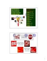 Kinh doanh quốc tế công ty đa quốc gia tập đoàn coca-cola