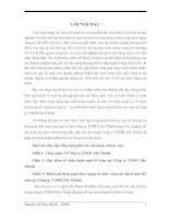 Báo cáo thực tập tổng hợp Công ty TNHH Tấn Thành.