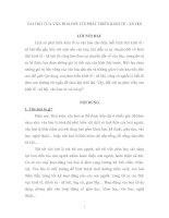 VAI TRÒ CỦA VĂN HOÁ ĐỐI VỚI PHÁT TRIỂN KINH TẾ - XÃ HỘI