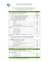 báo cáo tổng hợp phiếu khảo sát tại phường 2, thành phố Cao Lãnh