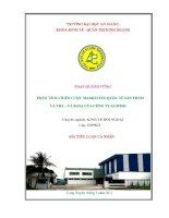 Phân tích chiến lược marketing quốc tế sản phẩm cá tra- cá basa của công ty Agifish
