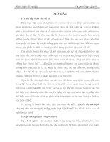 Nguyên tắc xác định cha, mẹ cho con trong hệ thống pháp luật Việt Nam