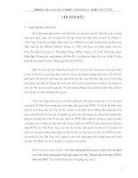 CÁC BIỆN PHÁP PHI THUẾ QUAN VÀ LỘ TRÌNH CẮT GIẢM CỦA VIỆT NAM TRONG QUÁ TRÌNH GIA NHẬP WTO TỚI 2010