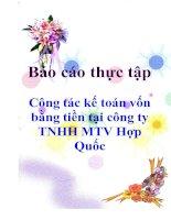 Công tác kế toán vốn bằng tiền tại công ty TNHH MTV Hợp Quốc