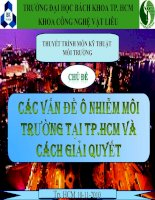 các vấn đề ô nhiễm môi trường tại TP.Hồ Chí Minh và cách giải quyết