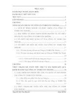ĐÁNH GIÁ THỰC TRẠNG KẾ TOÁN TIÊU THỤ VÀ XÁC ĐỊNH KẾT QUẢ KINH DOANH TẠI CÔNG TY TNHH TẤN THÀNH