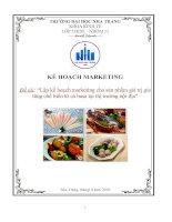Lập kế hoạch marketing cho sản phẩm giá trị gia tăng chế biến từ cá basa tại thị trường nội địa