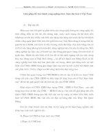 GIẢI PHÁP ĐỂ TIẾN HÀNH CÔNG NGHIỆP HÓA HIỆN ĐẠI HÓA VIỆT NAM