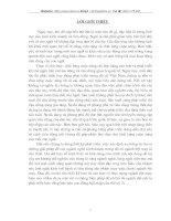 MỘT SỐ VẤN ĐỀ PHÁT TRIỂN NGÀNH DỆT MAY NHẰM THOẢ MÃN TỐT HƠN NHU CẦU NGƯỜI TIÊU DÙNG Ở NHÁNH VĂN HOÁ NGƯỜI KINH